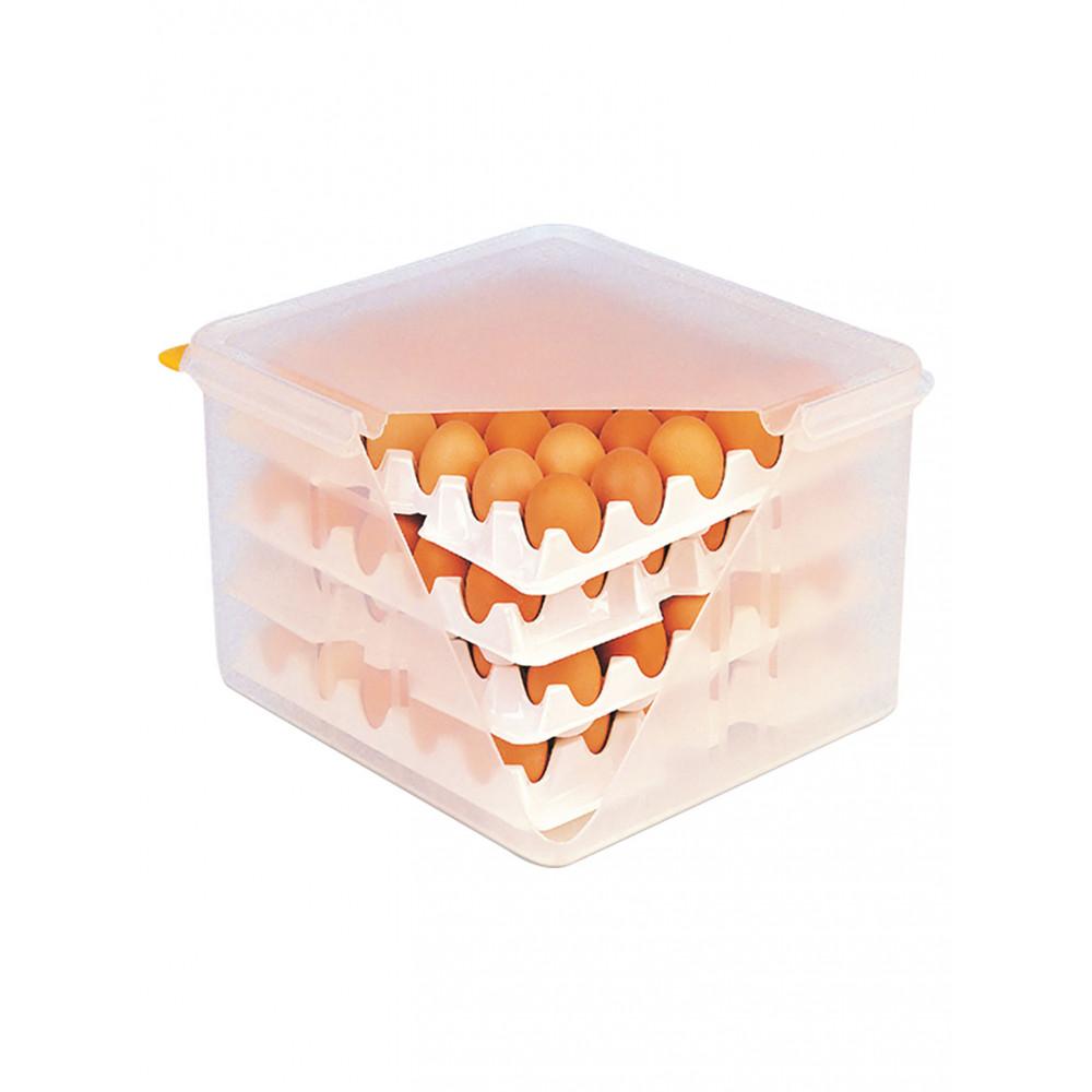 Eierbewaardoos - incl. 8 trays - 30 eieren per tray - H 20 x 35.4 x 32.5 CM - Promoline